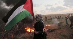 palestine5-10-2018